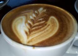cappacino cafe medici