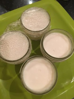 coconut yogurt4